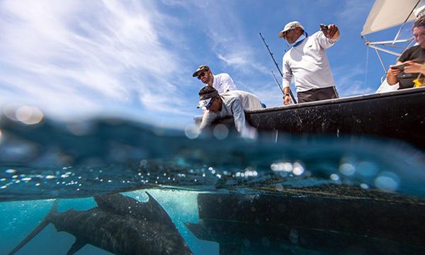 Fishing Records